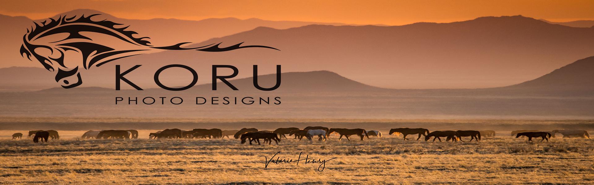 Koru Photo Designs