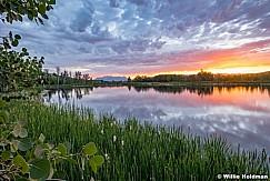 Golden Pond Heber 1